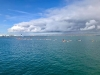 RadeBoutBras_Aviron_Cherbourg_0004